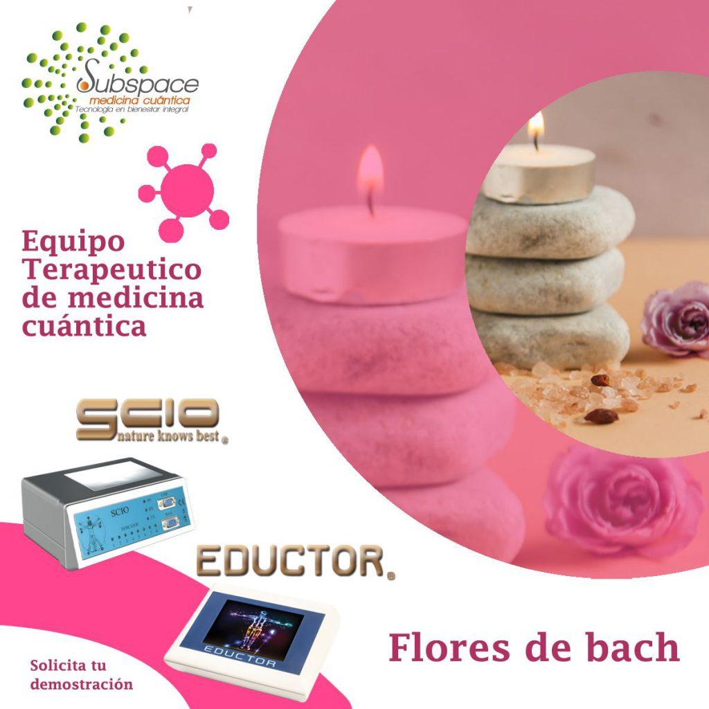 Flores de bach, medicina cuántica, SCIO y EDUCTOR Equipo terapeuticoa, quntum balance, biofeedback