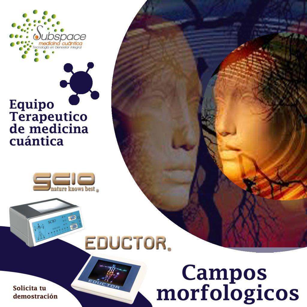 Equipo terapeutico de campos morfologicos,, Equipo terapeutico biofeedback, Quantum balance, medicina cuántica, SCIO y EDUCTOR