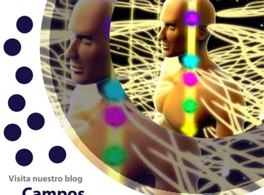 visita nuestro blog de campos morfologicos, Equipo terapeutico biofeedback, Quantum balance, medicina cuántica, SCIO y EDUCTOR, blog