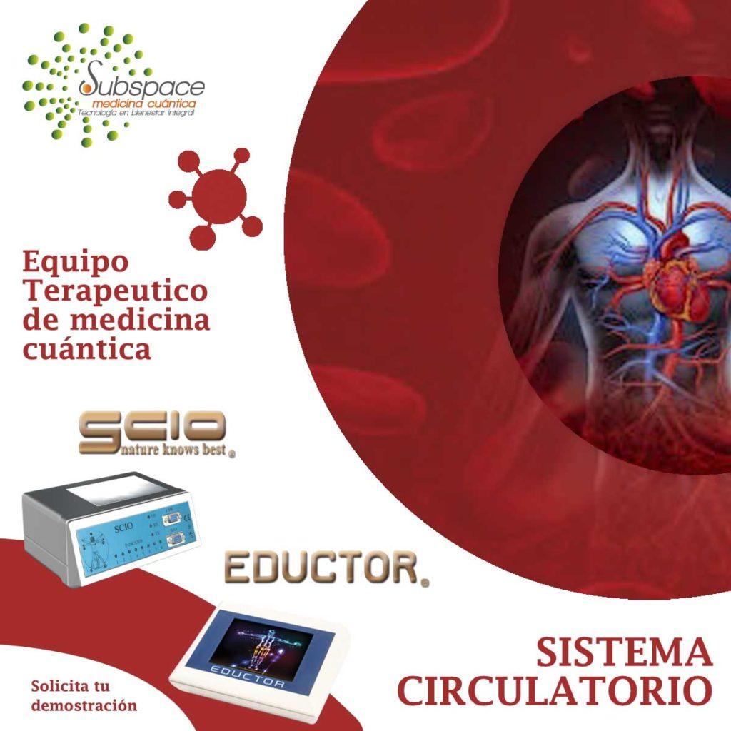 equipo terapeutico de sistema circulatorio, terapeutico biofeedback, Quantum balance, medicina cuántica, SCIO y EDUCTOR QUEX S, QUEX ED, blog terapeutico biofeedback scio